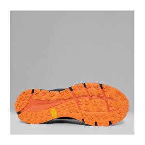 Zapatilla The North Face Endurus TR